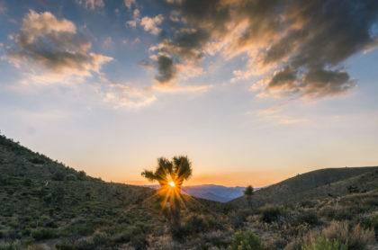 Süd Kalifornien
